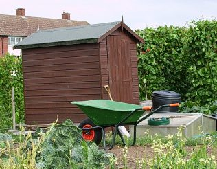 Allotment with wheelbarrow and shed | Jim Holton (photographer)